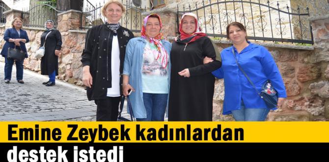Emine Zeybek kadınlardan destek istedi