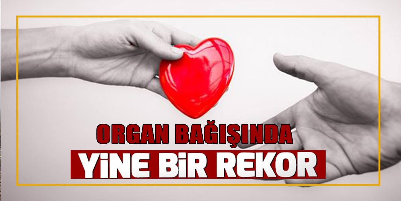 Organ Bağışında REKOR !