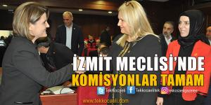 İzmit Meclisi'nde Komisyonlar Belirlendi