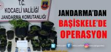 Başiskele'de Uyuşturucu Operasyonu