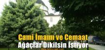 Cami Cemaati Ağaçlarını Geri İstiyor