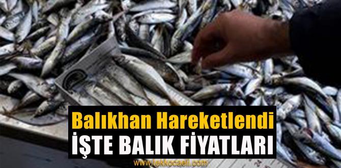 Balık Çeşitleri Attı, Balıkhan Hareketlendi