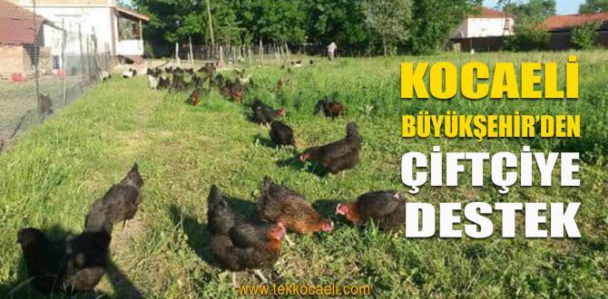 Kocaeli Büyükşehir'den Çiftçiye 800 Bin TL.lik Destek