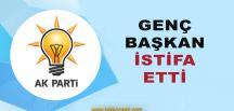 AKP'de İstifa !