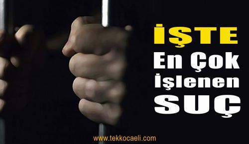 Kocaeli'de En Çok İşlenen Suç Bakın Neymiş!