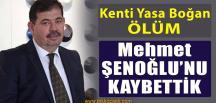 Mehmet Şenoğlu Hayatını Kaybetti