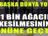 İzmit Belediyesi, Yılın Çevrecilerine Ödüllerini Verdi