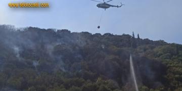 Halıdere'deki Orman Yangınında 1 Kişi Gözaltına Alındı