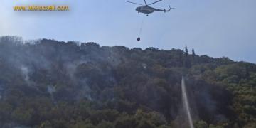 Gölcük Halıdere'de Orman Yangını