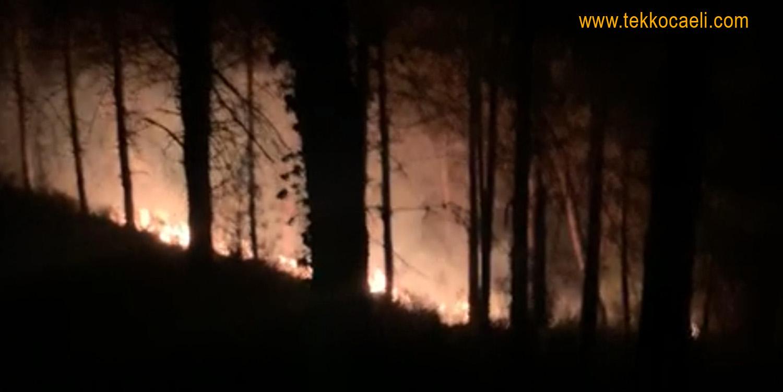Başiskele Yuvacık'ta Korkutan Yangın