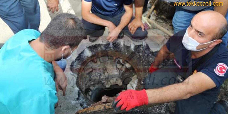 Kanalizasyonda Mahsur Kalan Köpek Böyle Kurtarıldı