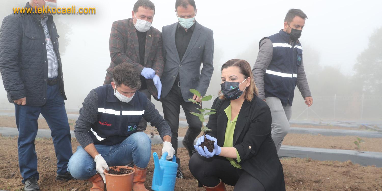 İzmit Belediyesi Üretiyor; Pandemi Sürecine İlaç Gibi Gelecek