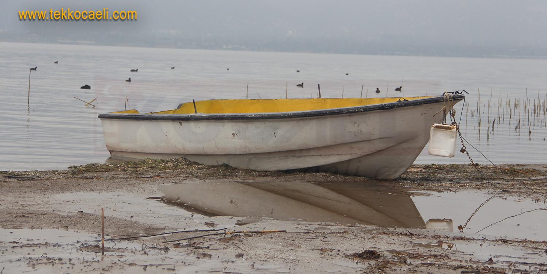 Sapanca Gölünde Şok Görüntüler