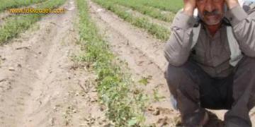 Çiftçinin Borcu Yeniden Yapılandırılacak