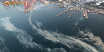 'Deniz Salyası' İzmit Körfezi'nde Yine Ortaya Çıktı